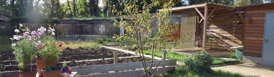 Un jardin qui peine à prendre racine
