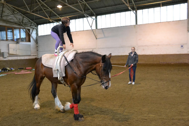 Son objectif : permettre aux chevaux et poneys retraités et réformés du Club d'avoir une retraite tranquille.