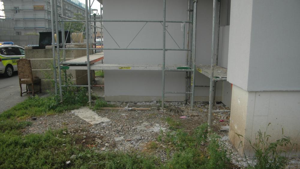 Au pied des immeubles, le manque d'entretien et la présence de déchets attirent les rongeurs.