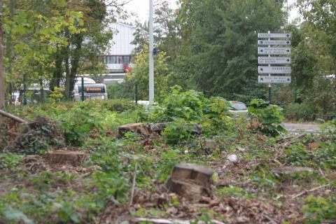 Densification la ville attendue au coin du bois for Au coin de la piscine