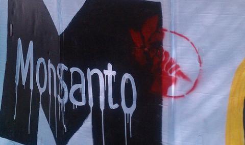 Le Brésil condamne Monsanto et sa politique commerciale