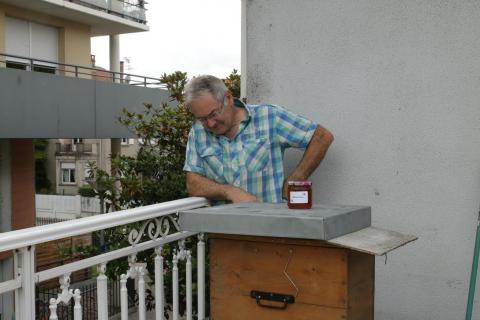 Guy Scheer avec sa ruche